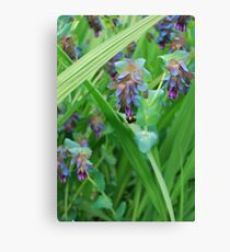 The Weight of the Bumblebee Canvas Print