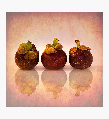 Purple Mangosteen Photographic Print