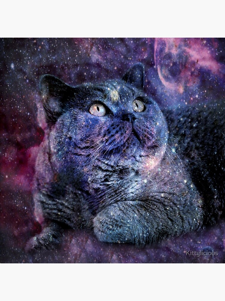 Kittylicious Space Cat  by Kittylicious