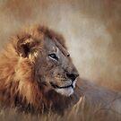 Der Löwe steht für Macht, Aggression und Macht. von Lyn Darlington