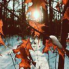 «el año pasado otoño en este invierno» de Julia  Kovtunyak