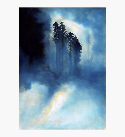Forêt Mystérieuse Impression photo