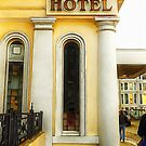 Royal Albion Hotel Brighton by Dorothy Berry-Lound