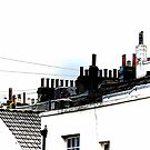 Hove Rooftops by Dorothy Berry-Lound