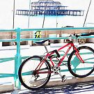 The Bicycle And The West Pier by Dorothy Berry-Lound