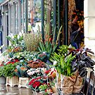 The Florist Shop by Dorothy Berry-Lound