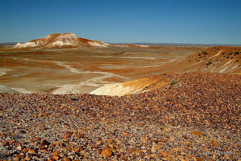 The Painted Desert by Joe Mortelliti