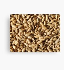 Food - Yummie almonds Canvas Print