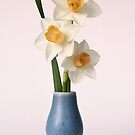 three daffodils in a blue vase by OldaSimek