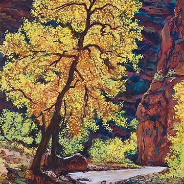 Escalante River Southern Utah by donnaroderick