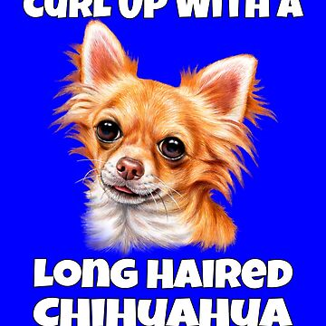 Curl Up With A Long Hair Chihuahua Dog  by fantasticdesign