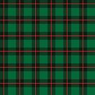 Plaid pattern, green, black and red colors by artonwear