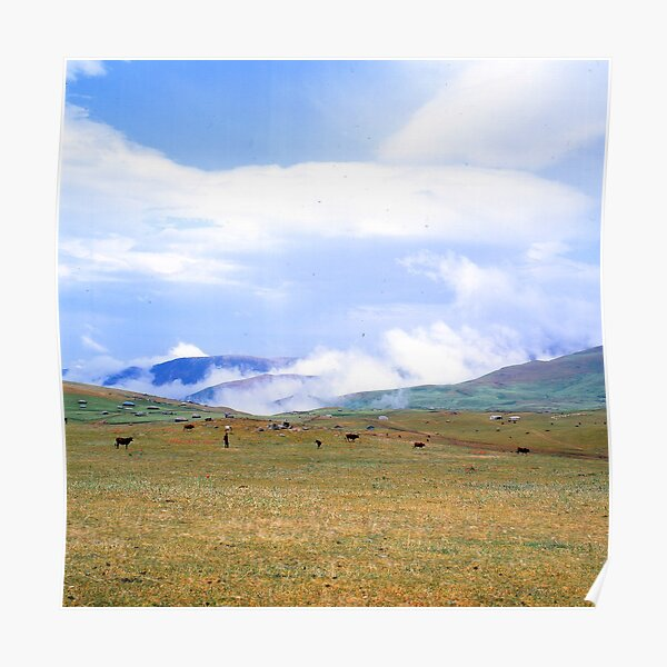 Nature of Iran -  Green Land - Trees and lifes - Persian Lands Photography M-78 Poster