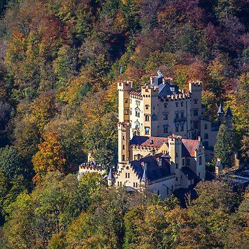 Germany. Bavaria. Hohenschwangau Castle. by vadim19