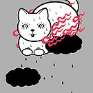 Burning cat is floating in the sky (sweating so much) by RYURAKUDO