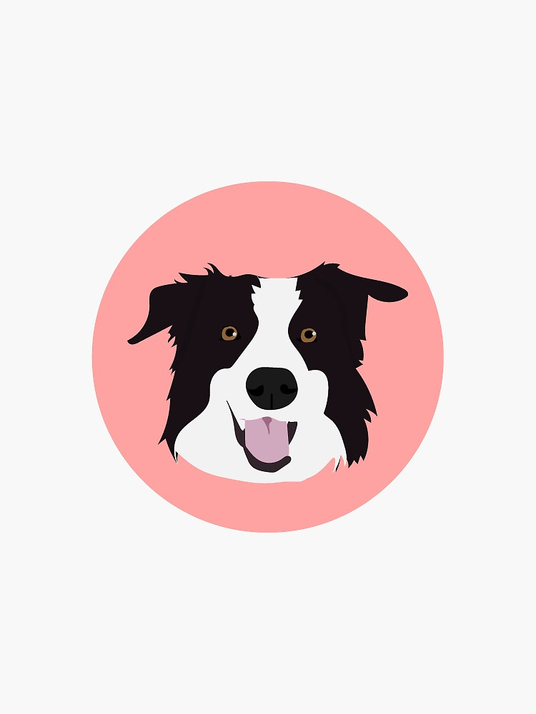 Border Collie by ProjectAmity