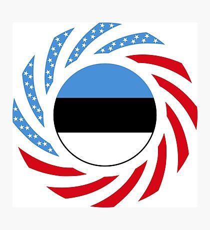 Estonian American Multinational Patriot Flag Series Photographic Print