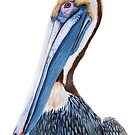 Pelican by doggyshop