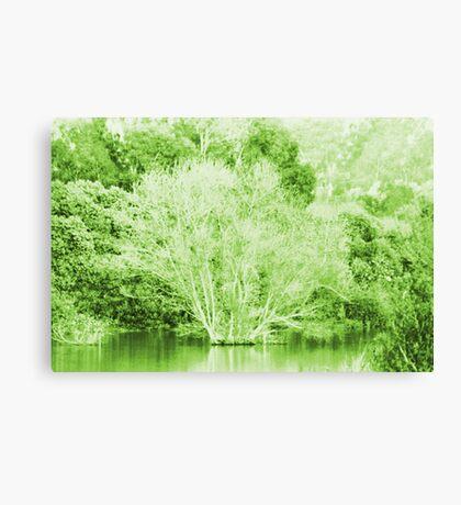 Pond Trees photo painting Canvas Print