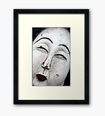 The Painted Lady Framed Print