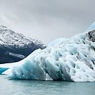 Perito Moreno by Silvia Tomarchio