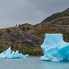 Perito Moreno, Argentina by Silvia Tomarchio