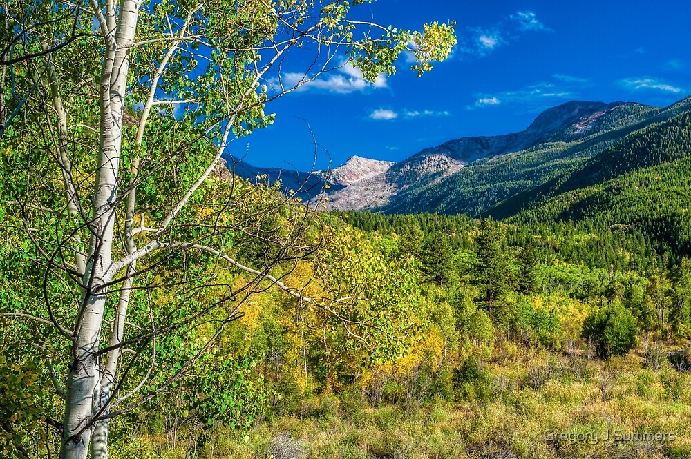 Looking Back On Independence Pass   by Gregory J Summers