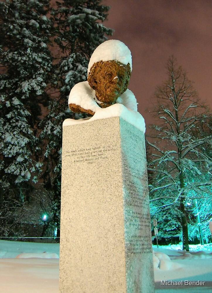 Albert Einstein's snowy white hair by Michael Bender