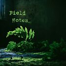 Ferns with text Field Notes by Lenka Vorackova