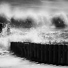 Waves Breaking by Mary Ann Reilly