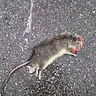Squished Rat by insizlane