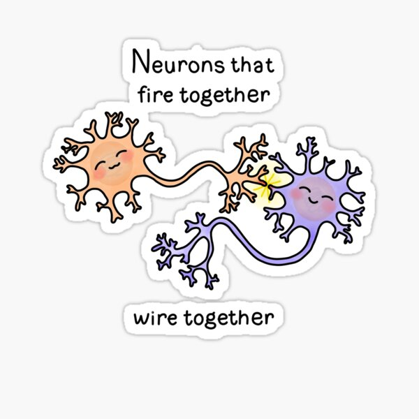 Neurons Sticker