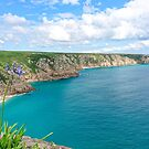View from Minack Theatre, Porthcurno, Cornwall, England by Marilyn Harris