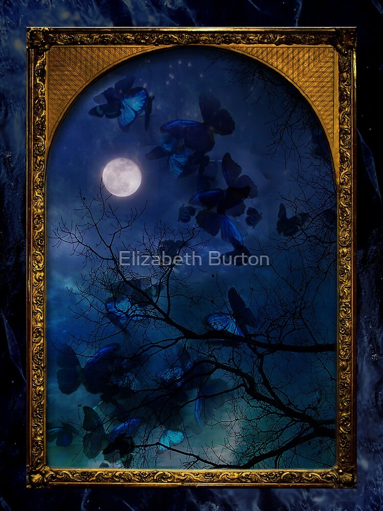 Butterfly Migration by Elizabeth Burton