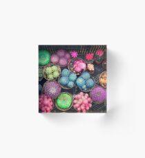 Cactus rainbow Acrylic Block