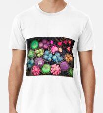 Cactus rainbow Premium T-Shirt