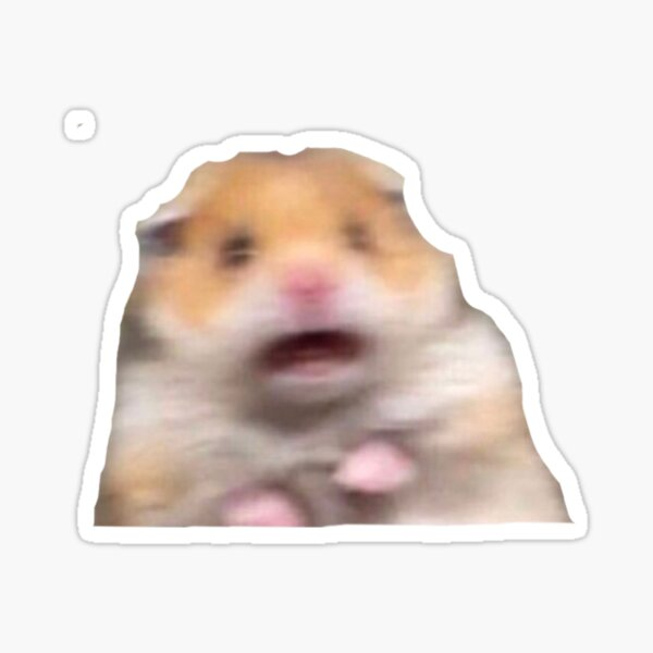 hamster meme Sticker