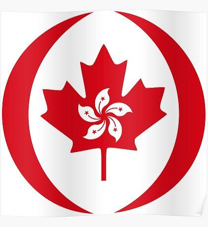 Hong Konger Canadian Multinational Patriot Flag Series Poster