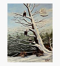 Home to Roost Photographic Print