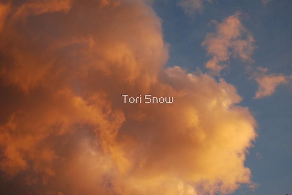 Big Heart by Tori Snow