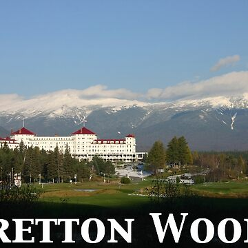 Bretton Woods 65th Anniversary Poster by waynedking