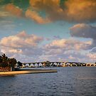 Scenes from Miami V by PJS15204