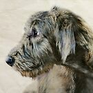 Wolfhound Pup #4 by Laurie Minor