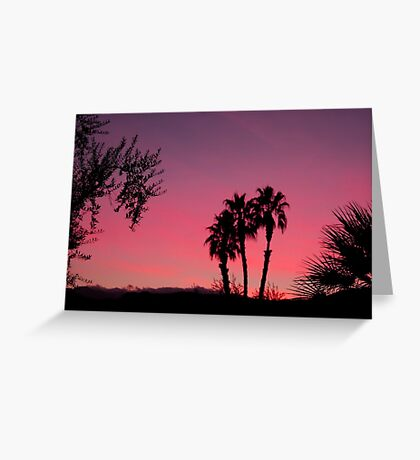 Vivid Desert Sunset Greeting Card