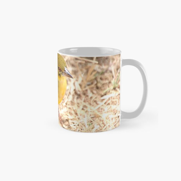 Yellow-fronted Canary, Serengeti National Park, Tanzania  Classic Mug