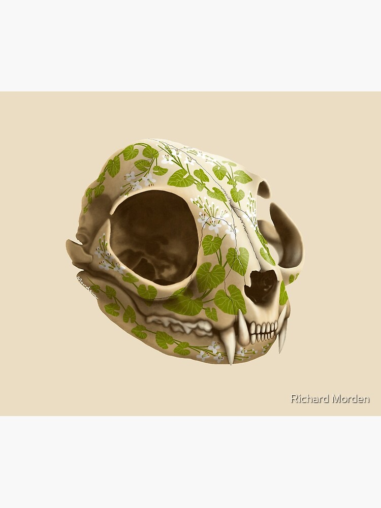 cat skull decorated with wasabi flowers by morden