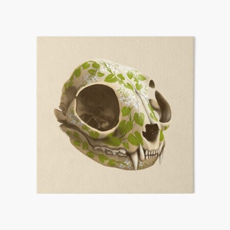 cat skull decorated with wasabi flowers Art Board Print