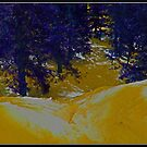 Yellow Snow by Chet  King