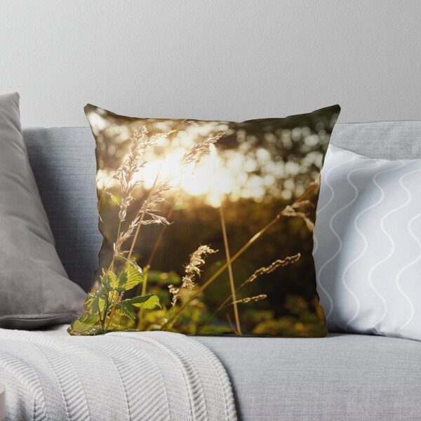 Sunset Views Throw Pillow
