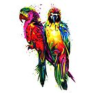 Rainbow Parrots by Apatche Revealed